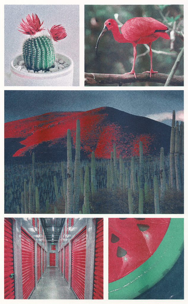 Various photographs including a cactus, bird, desert landscape, storage unit, and inflatable watermelon Riso printed in agave, steel, cranberry Riso ink