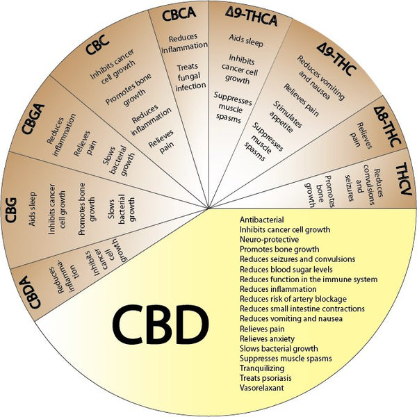 Understand the benefits of CBD Oil,  What does CBD do?  How does CBD Oil Work?
