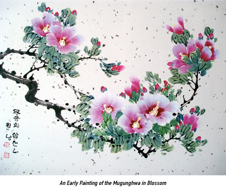 South Korean national flower mugunghwa or rose of sharon painting