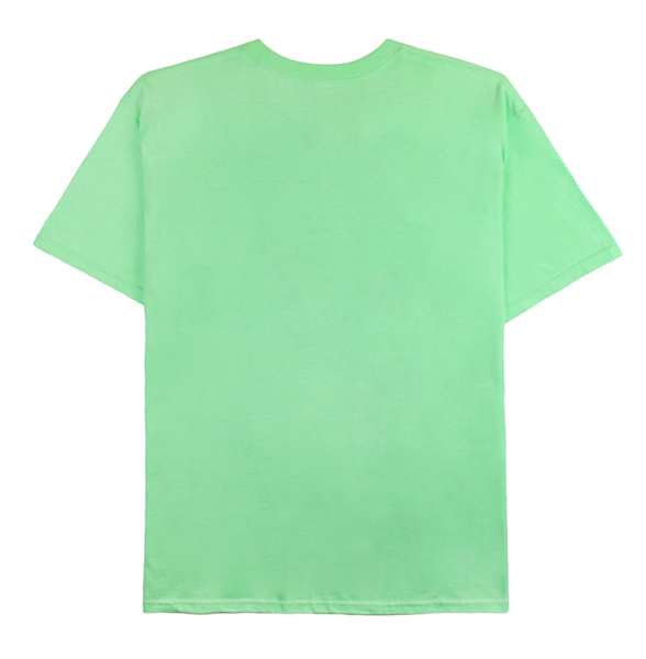 Back view of mint tee with Hani design printed on the front.