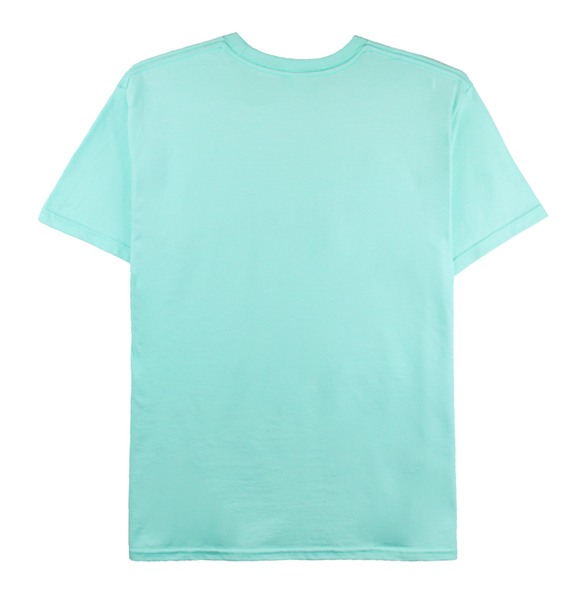 Front view of celadon tee with Rainbow design printed on the front.