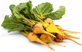 Beetroot - Yellow Baby bunch