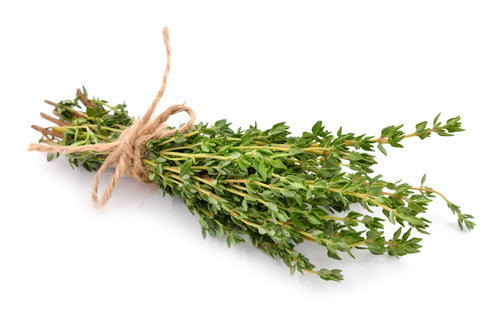 Bunch of thyme on black background