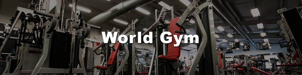 hipbiz-holdings-world-gym