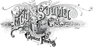 Original logo for ecosoapia
