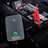 Smart Maintenance Battery Charger 1 Amp
