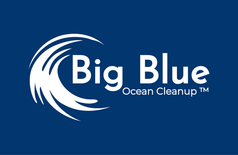 big blue ocean clean up
