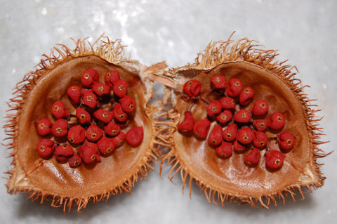 urucum oil fruit