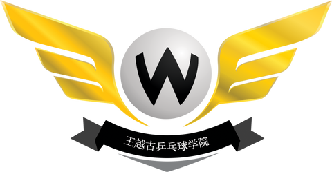 [MEMBERSHIP] WANG YUEGU TABLE TENNIS ACADEMY - 2 YEARS
