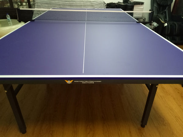 Table - Wang Yuegu Table Tennis Academy