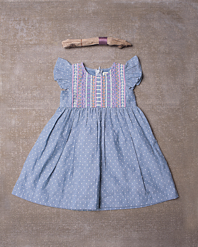 Evandale Dress in Chambray