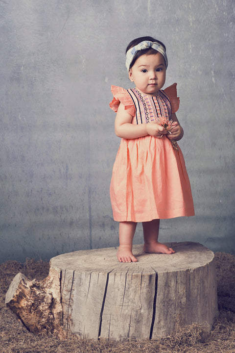 Evandale Dress in Tangerine