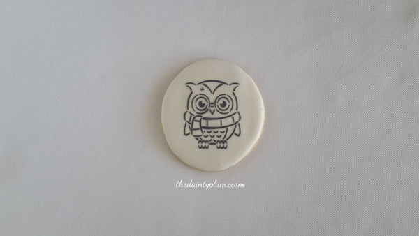 Paint Your Own PYO Owl Cookie