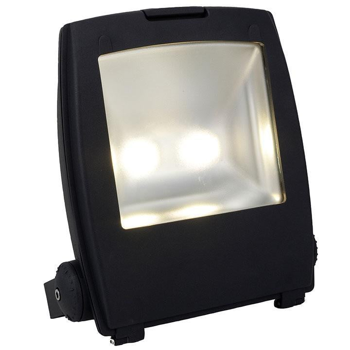Ansell Carina 100W LED Floodlight Cool White - AMLED100
