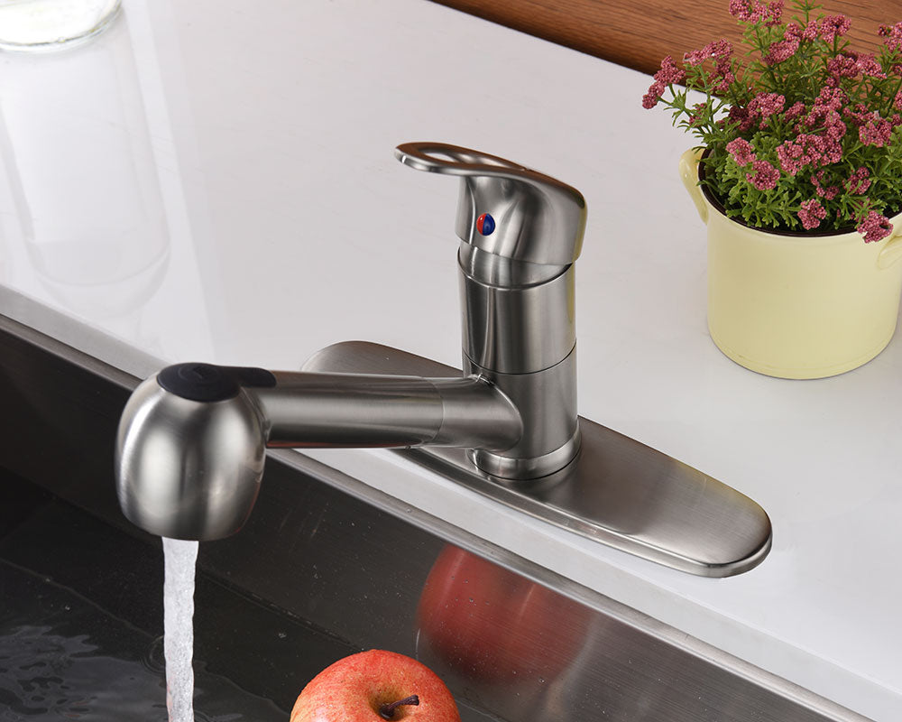 Single Handle Pull-Out Kitchen Faucet - KSK1113