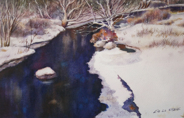 Black Brook in Winter