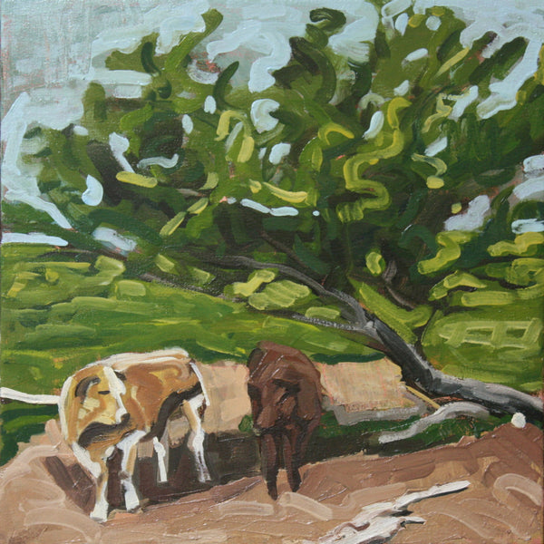 Cows with Tree