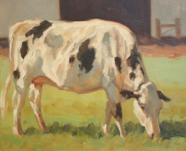 Young Holstein