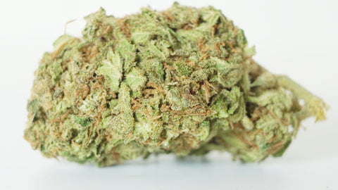 Lime Haze (Sativa)