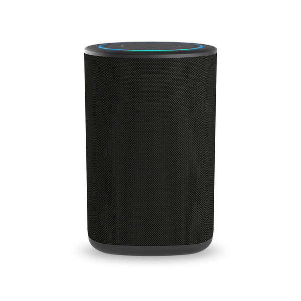 VAUX Portable Speaker for Echo Dot