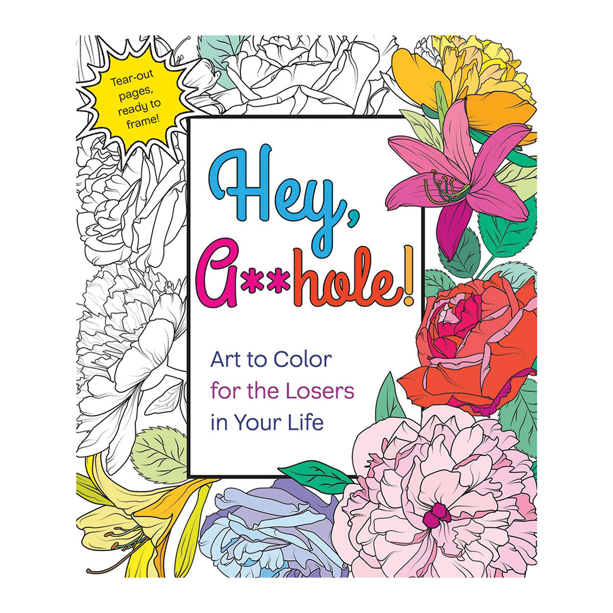 Hey A**hole Coloring Book