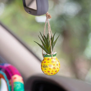 Pineapple Mini Hanging Succulent