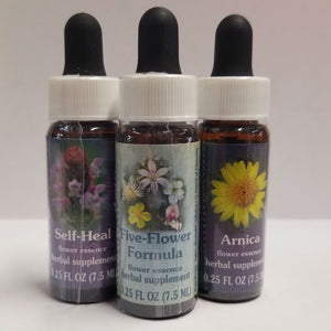 Fuchsia Flower Essence