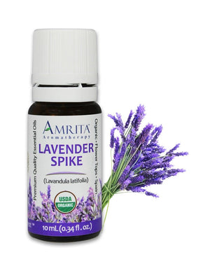 Organic Lavender Spike Spain Essential Oil