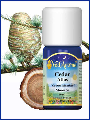 Cedar Atlas 10 ML