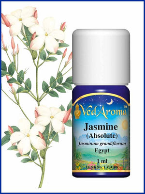 Jasmine Absolute 1 ML