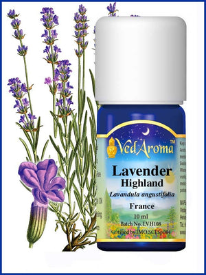 Lavender Highland 10 ML