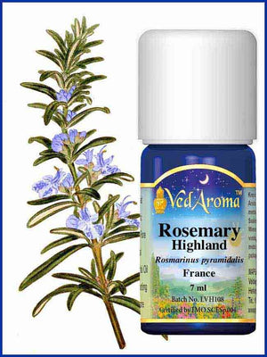 Rosemary Highland 10 ML