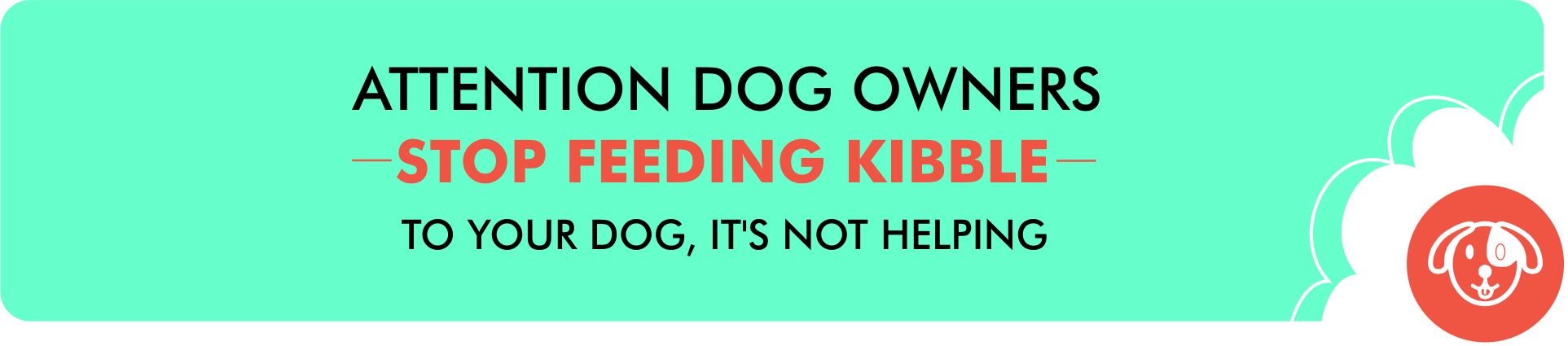 STOP FEEDING KIBBLE TO YOUR DOG