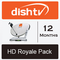 HD Royale 12 Months