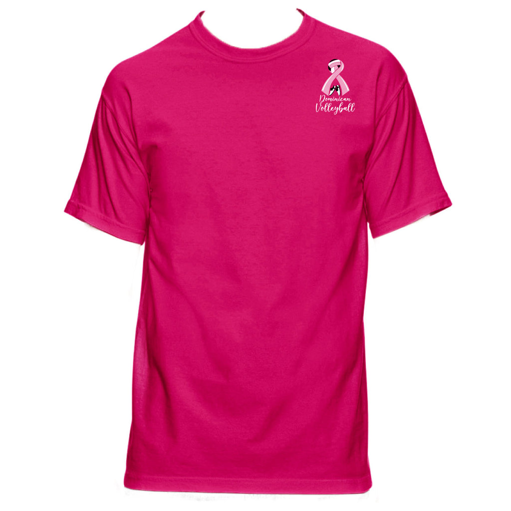 DHS PINK - Comfort Colors Youth Midweight RS T-Shirt
