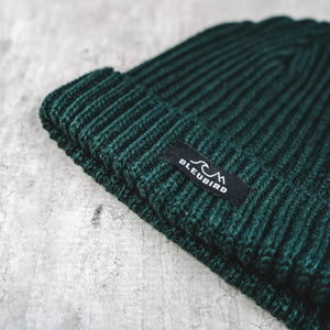 Fisher Beanie - Green