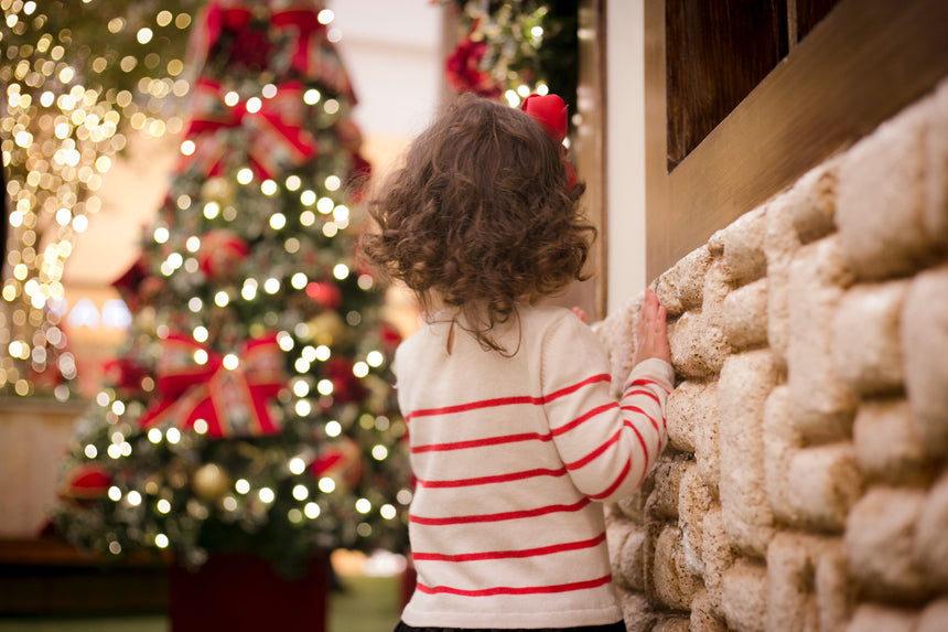 Surviving the Holidays with Autism