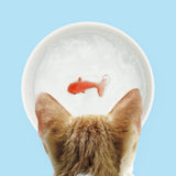 Goldfish Pet Bowl