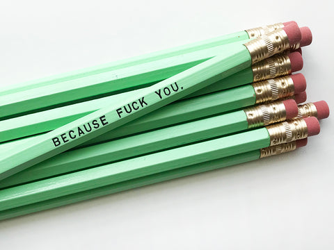 Because Fuck You Pencil Set