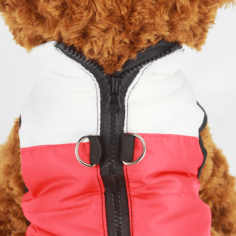 Image of Dog Winter Jacket With Buckle - Home & Garden, Furniture / Pet Products / Dog Clothing & Shoes