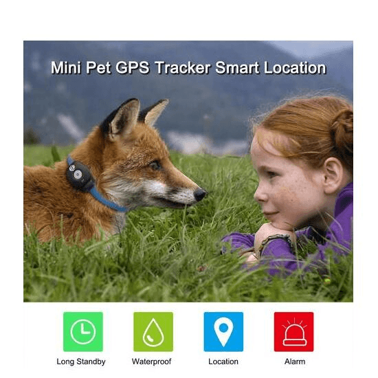 GPS Dog Tracker Collar Waterproof - Home & Garden, Furniture / Pet Products / Dog Collars, Harnesses & Leads
