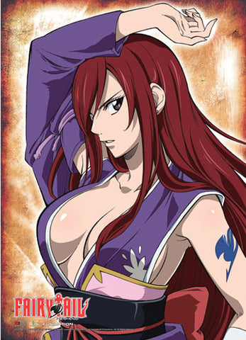 Fairy Tail Erza Wall Scroll 60236