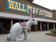 Wall Drug Jackalope that helpped inspire the Jackalope Men's socks