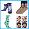 Dogs, Cats, Animal Socks