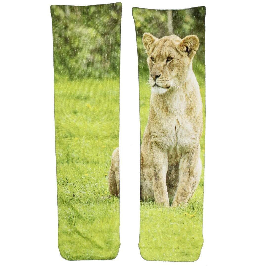 Lioness Socks - Women's Crew Socks
