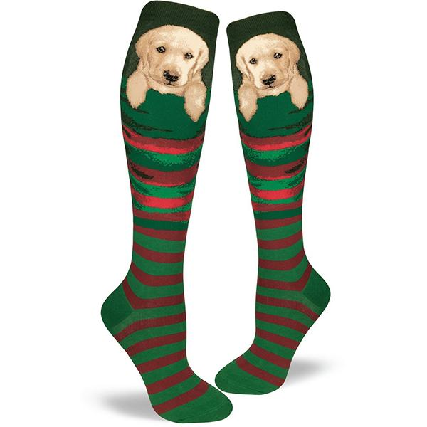 Stocking Pupper Women's Knee High Socks Green / Red
