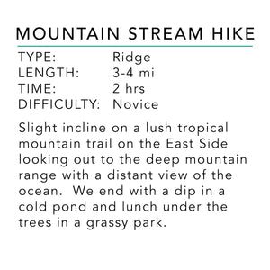 Mountain Stream Hike