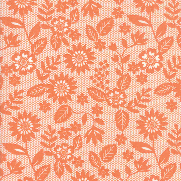 Sugar Pie, Lace Garden, Orange