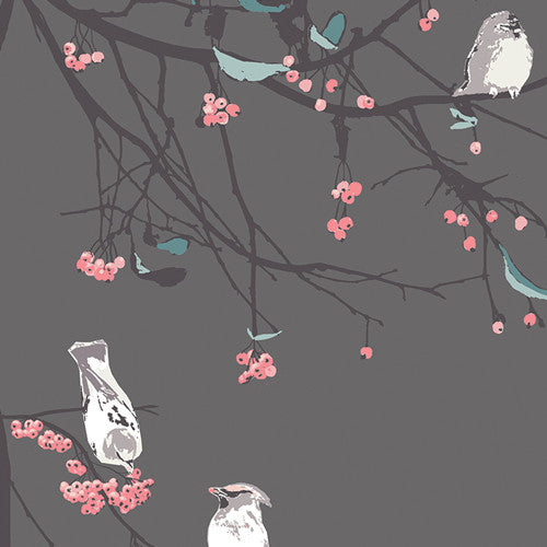 Bird Songs Moon