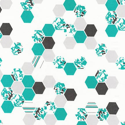 Palm Canyon, Hexagon, Teal